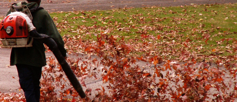 Leaf Blower Ordinance In-Effect