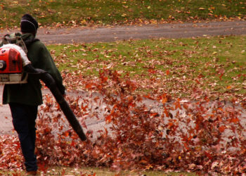 Leaf Blower Ordinance In-Effect